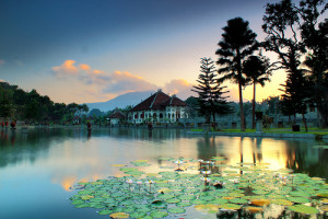 sukasada garden, indah is beauty, amriholiday